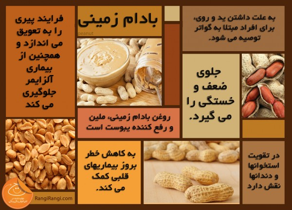 peanut-health-fact-graphic